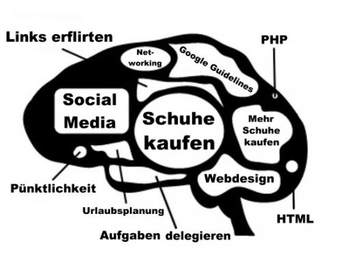 Das Gehirn einer SEOin