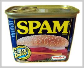 SEO Spam