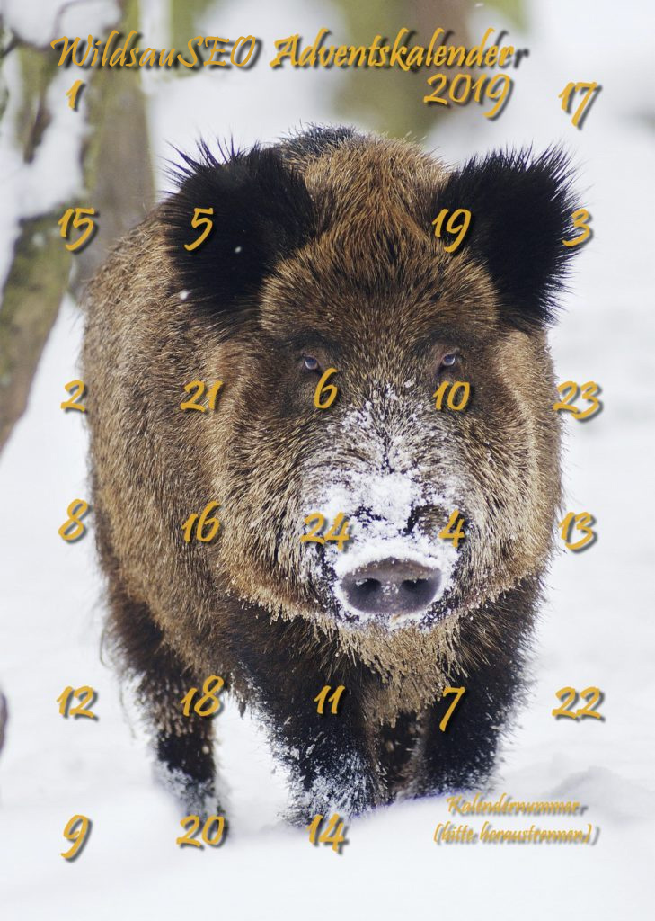 WildsauSEO Adventskalender 2019